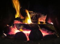 Log and Coal Fire