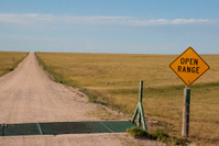 open range sign and road by cattle guard northeast Colorado