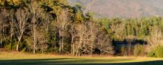Smoky Mountain Landscape
