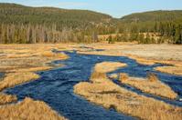 Creek in Yellowstone