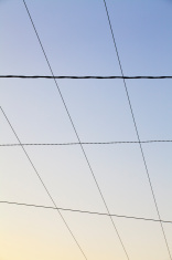 Wires up in the evening sky
