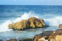 Seashore in Alexandria
