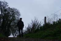 Morning walk in silhouette