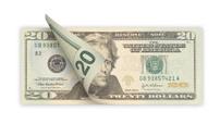 Twenty Dollars (isolated)