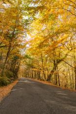 Autumn, Geres, Portugal