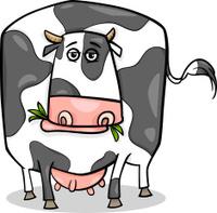 cow farm animal cartoon illustration