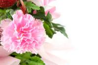 Pink fake flowers