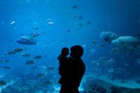 Father and Son at Aquarium in Atlanta Georgia