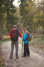 Couple hiking in forest checking map