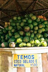 Brazil, Rio de Janeiro, fresh coconuts for sale.