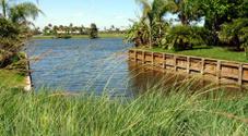 Golf Course waterway