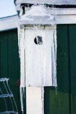 Frozen Birdhouse