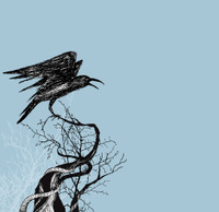 Crow With Wings on Branch