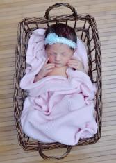 Newborn girl in a basket
