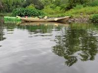 Kayaks on calm river or creek