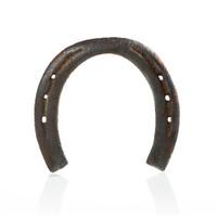 Iron horseshoe isolated on white