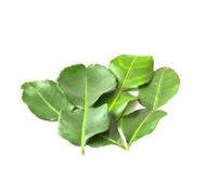Kaffir lime leaves isolated