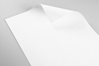 Blank sheet of paper with curled corner