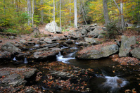 Scenic Ricketts Glen State Park