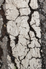 Textured road