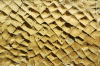 Wall Texture, Herculaneum, Italy.