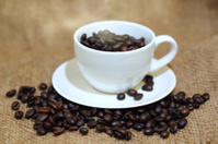 Warm cup of coffee bean