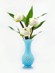 Water lily lotus in blue vase .