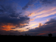 Year sky