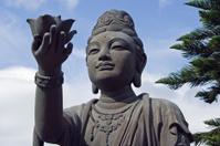 Goddess Worshipping Giant Buddha