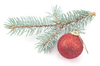 Christmas red  ball and pine needles isolated on white