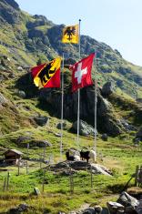 Flags of Uri Switzerland and Bern Canton