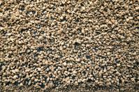 Barcelona Texture - Cocoa Beans