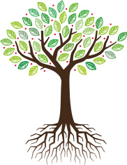Oak Tree And Roots Stock Vector Freeimages Com Max max 3ds fbx obj. oak tree and roots stock vector