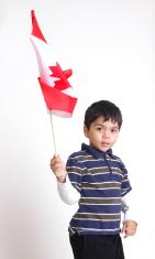 Little Boy Waving Canada Flag