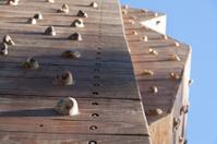 Artificial Rock Climbing Wall and Climbing Grips