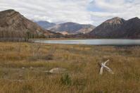 Dry landscape at the Andes near Potrerillos.