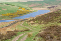 landscape, typically scottish, highlands, pentlands