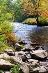 Panther Creek in Fall