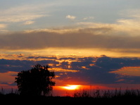 Sundowns and rises