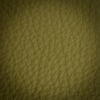 green leather macro shot