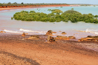 Coastal Australian Landscape