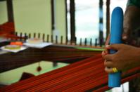 Silk weaving Handicraft