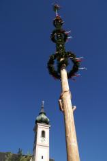Maibaum (Maypole) Climber in Austria