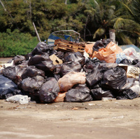 Garbage in the tropical caribbean beach