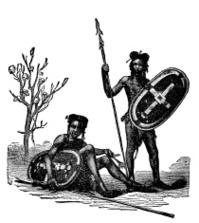 Victorian engraving of indigenous African warriors