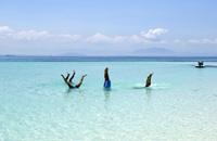 Tropical Island Fun