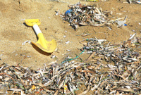 Polluted beach