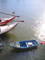 Portuguese boats postcard