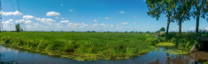 Panorama  dutch Polder with ditch and pylons