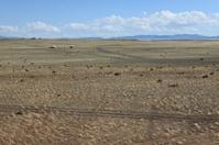 Landscape of Desert Gobi Mongolia